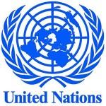 countries, developing, Fellowship, International, Law, Netherlands