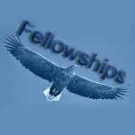 2015 Fellowships in Health Care Policy and Practice, USA