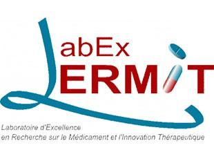 Labex Lermit Scholarships