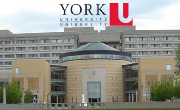 York University Scholarships for International Students in Canada ...