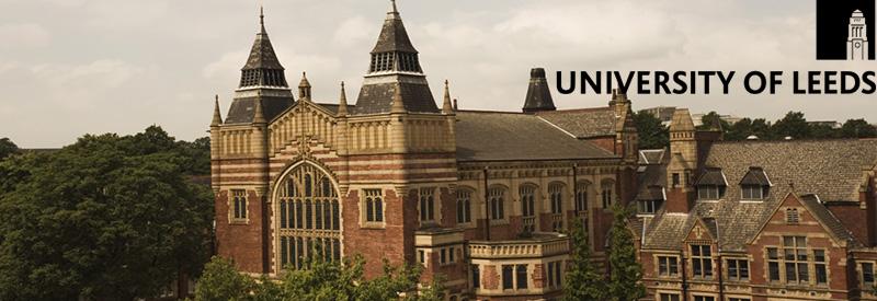 uk university  leeds school  electronic  electrical engineering scholarships