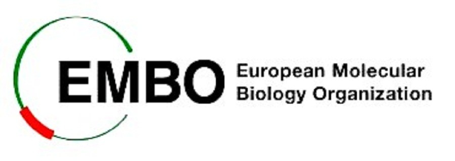 Germany EMBO Finance Officer – Administration and Finance/Fellowships 2018