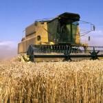 Nuffield Farming Scholarship